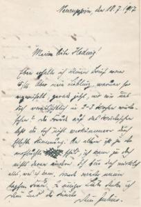 brief-1917-einstieg-geschichte